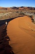 Sossusvlie - Namib Desert - Namibia