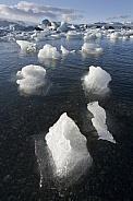 Melting Icebergs in Jokulsarlon - Iceland