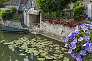 Flowers and Gardens - Loire Valley - France