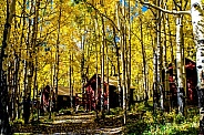 Cabin in the Aspens