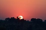 Sunset in bushveld