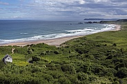 White Park Bay - Ireland