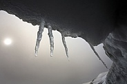 Icicles dripping water - Antarctica