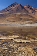 Laguna Miniques and Cerro Miscanti Volcano - Atacama Desert