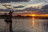 Safari guide with a tourist - Okavango Delta - Botswana