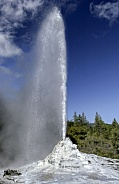 Lady Knox Geyser - Waiotapu - New Zealand.