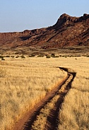 Desert track in Damaraland - Namibia