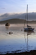 Early morning mist - Oban - Scotland