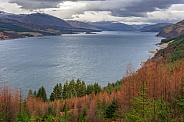 Loch Carron - Scotland