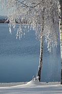 Winter at Canim Lake, BC Canada