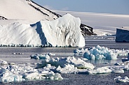 Weddell Sea - Antarctica