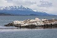 Beagle Channel - Tierra del Fuego - Argentina