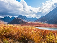 Denali Highway Alaskan Wilderness in Autumn