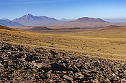 The high Altiplano - Atacama Desert - Chile