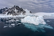 Sea ice - Antarctic Peninsula in Antarctica