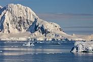 Cuverville Island - Antarctica