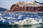 Sea ice - King Oscars Fjord - Greenland