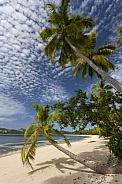 Fiji - South Pacific