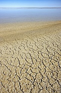 Salt Pan - Etosha National Park - Namibia