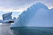Icebergs - Melchior islands - Antarctica