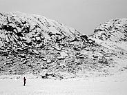 Pallisaderne Island - Greenland