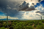 Storm over the Arizona Desert