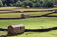 Traditional dry-stone walls and stone barns - Yorkshire Dales - England