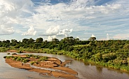 Wild Africa - River and Bush