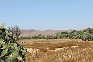 Landscape of the Eastern Rif Mountains (Morocco)