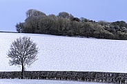 Winter weather - Yorkshire - United Kingdom