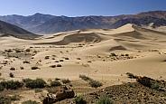 Tibet - Sand dunes - Tsetang