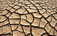 Drought - Africa