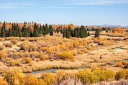Blacktail Ponds Overlook