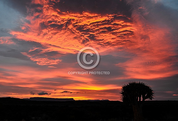 Winter Sunrise In The Karoo