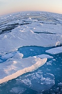 On Top of the World - Polar sea ice