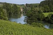 Hautvillers near Epernay - France