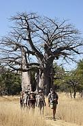 Adventure tourists on a walking safari - Namibia