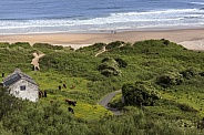 White Park Bay - Northern Ireland