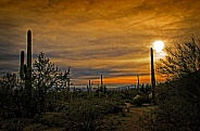 Sunset at Brown Mountain