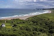 White Park Bay - Ireland