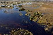 Aerial view - Okavango Delta - Botswana