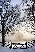 Cold and misty winter's morning in rural England