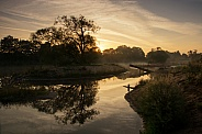 Sunrise , Nature