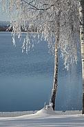 Winter at Canim Lake, BC Canada