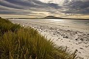 Falkland Islands (Islas Malvinas)