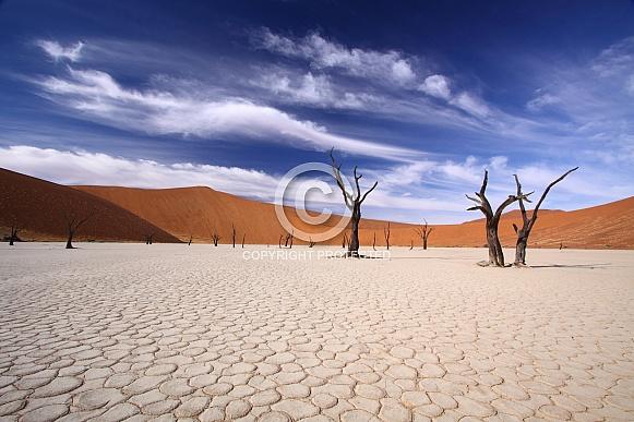 Sossusvlei  Deadvlei, Namibia