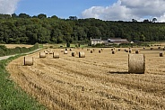 Yorkshire countryside at harvest time - England