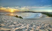Forster Beach