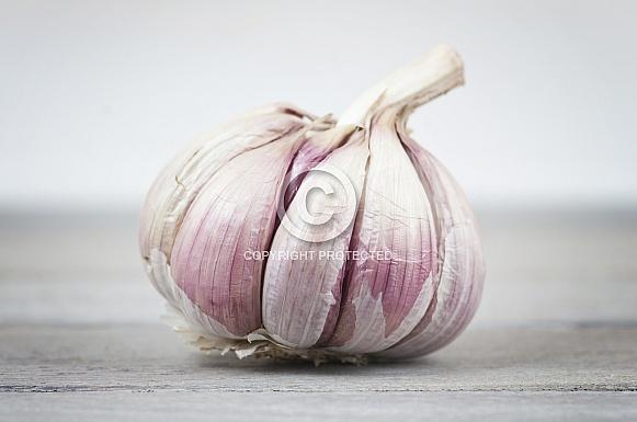 plump garlic bulb