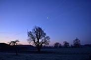 Moon across a frosty field